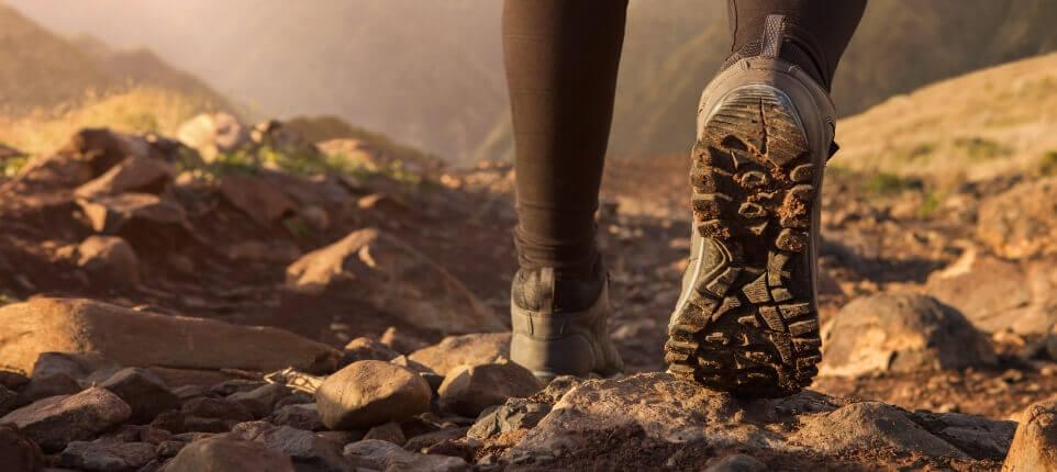 Trail Hiking.jpg
